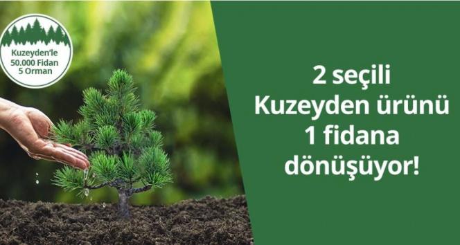 Kuzeyden 50 bin fidan ile 5 orman oluşturuyor