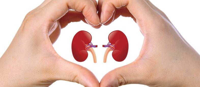 Tüberküloz sadece akciğerleri tehdit etmiyor